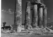 1960 053 36 Corinth, Archaic Temple, from Northwest, A_ Franz.jpg
